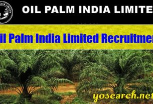 Oil Palm India Limited Recruitment