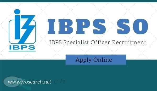 ibps specialist officer recruitment