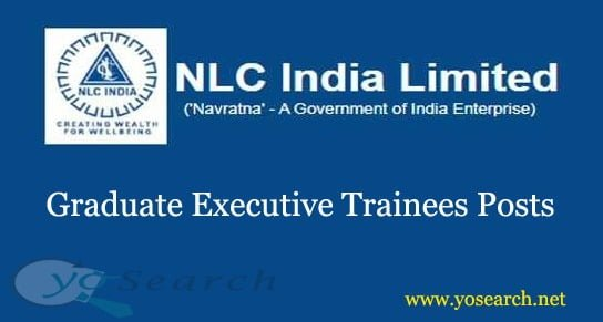 nlc graduate executive trainee