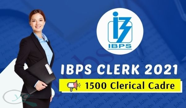 ibps clerk 2021 recruitment