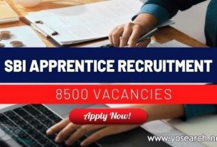 sbi apprentice recruitment 2021