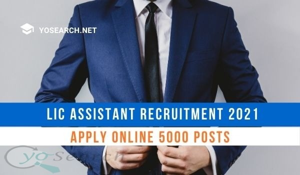 LIC Assistant Recruitment 2021