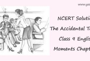 The Accidental Tourist Class 9 English Moments Chapter 9 NCERT Solutions